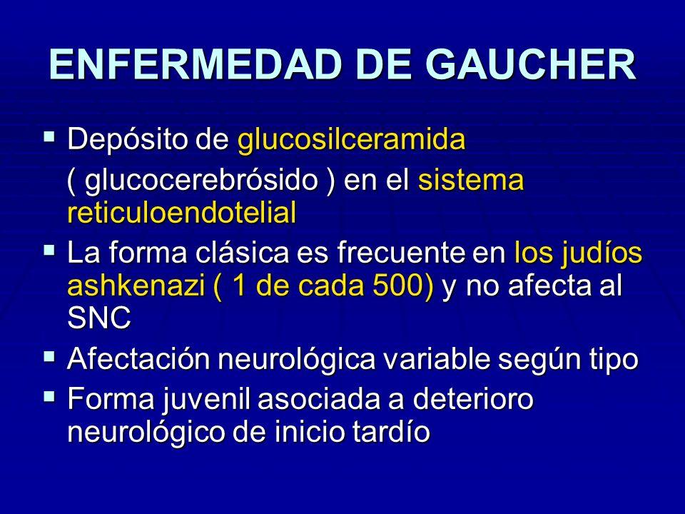 ENFERMEDAD DE GAUCHER Depósito de glucosilceramida