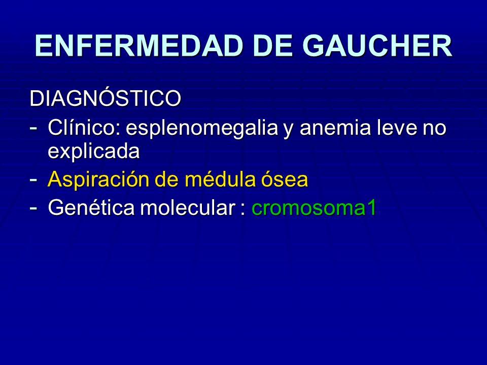 ENFERMEDAD DE GAUCHER DIAGNÓSTICO