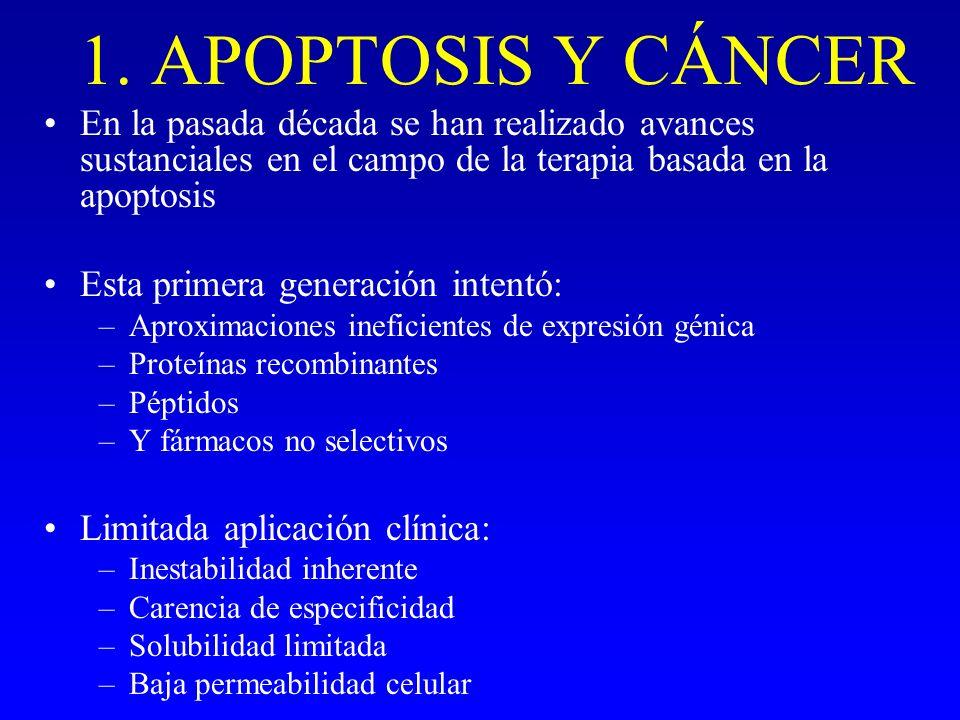 1. APOPTOSIS Y CÁNCER En la pasada década se han realizado avances sustanciales en el campo de la terapia basada en la apoptosis.
