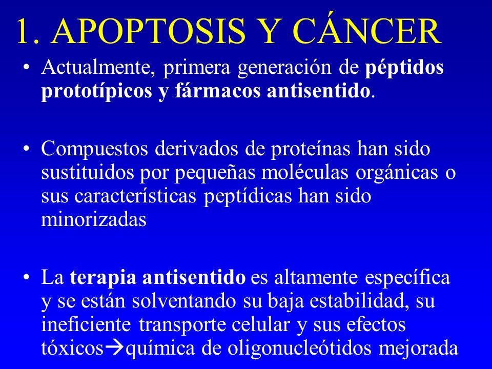 1. APOPTOSIS Y CÁNCER Actualmente, primera generación de péptidos prototípicos y fármacos antisentido.
