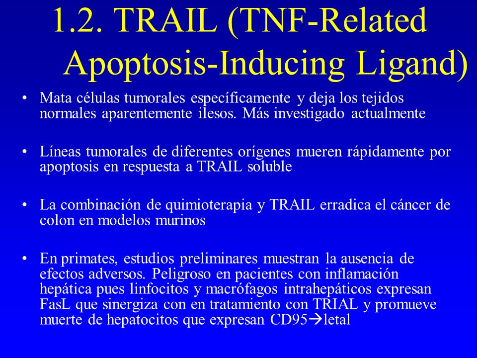 1.2. TRAIL (TNF-Related Apoptosis-Inducing Ligand)