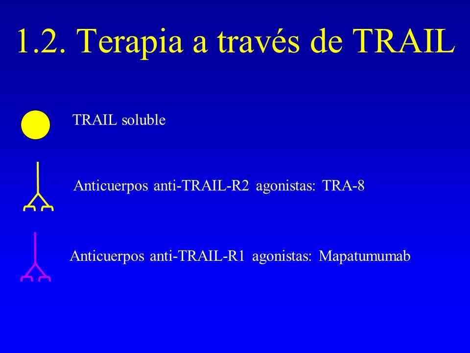 1.2. Terapia a través de TRAIL