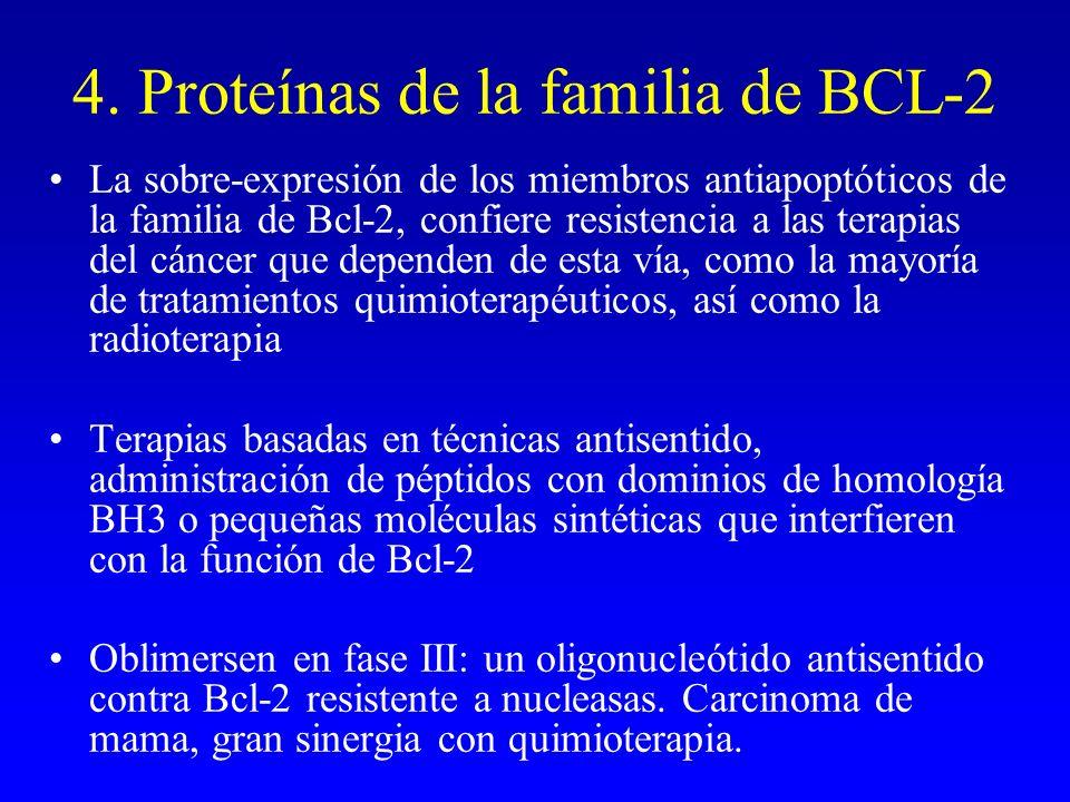 4. Proteínas de la familia de BCL-2