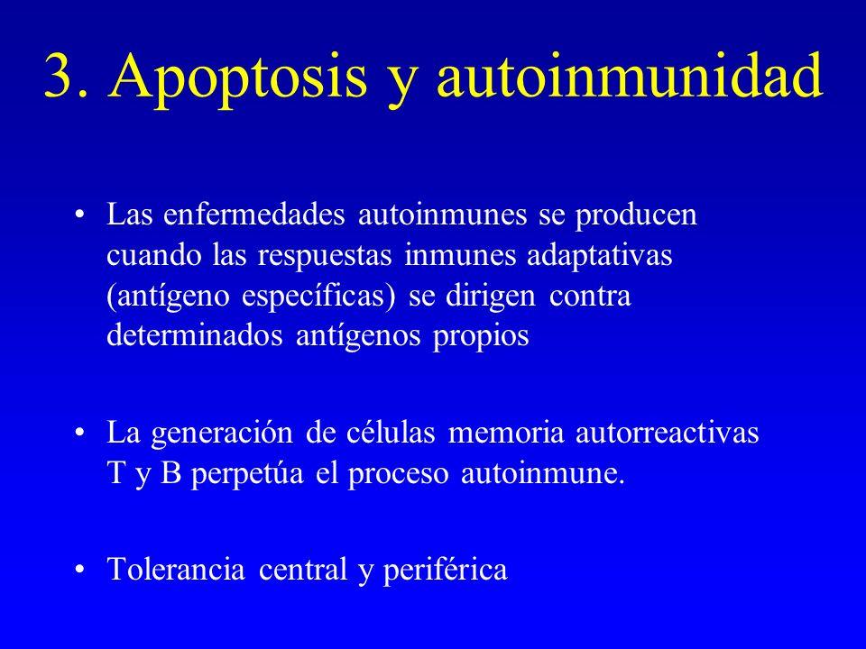 3. Apoptosis y autoinmunidad