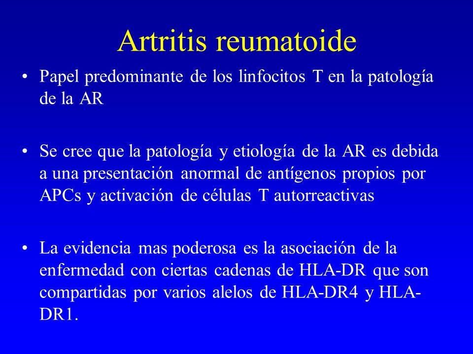 Artritis reumatoide Papel predominante de los linfocitos T en la patología de la AR.