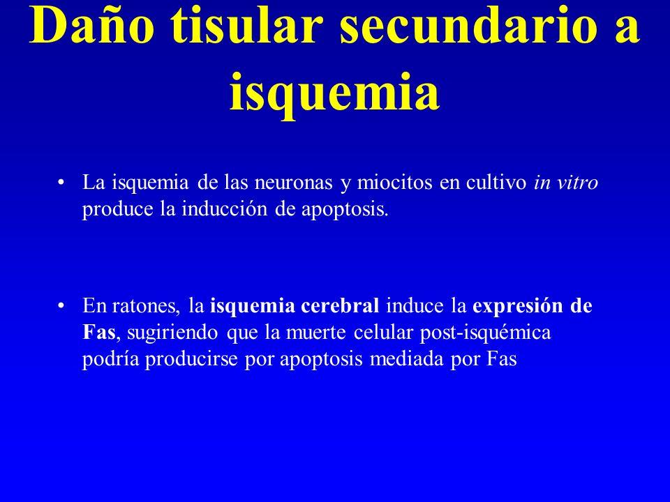 Daño tisular secundario a isquemia
