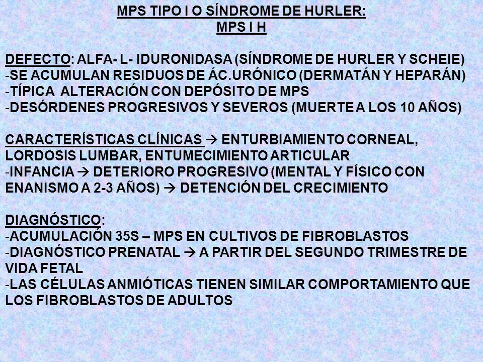 MPS TIPO I O SÍNDROME DE HURLER:
