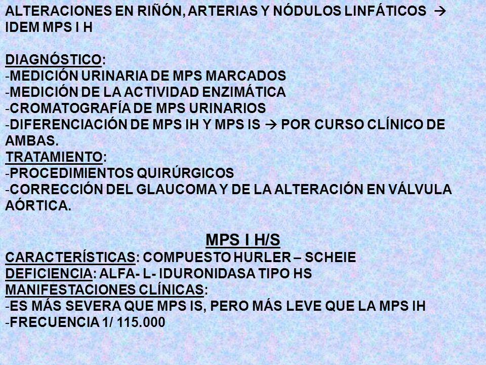 ALTERACIONES EN RIÑÓN, ARTERIAS Y NÓDULOS LINFÁTICOS  IDEM MPS I H