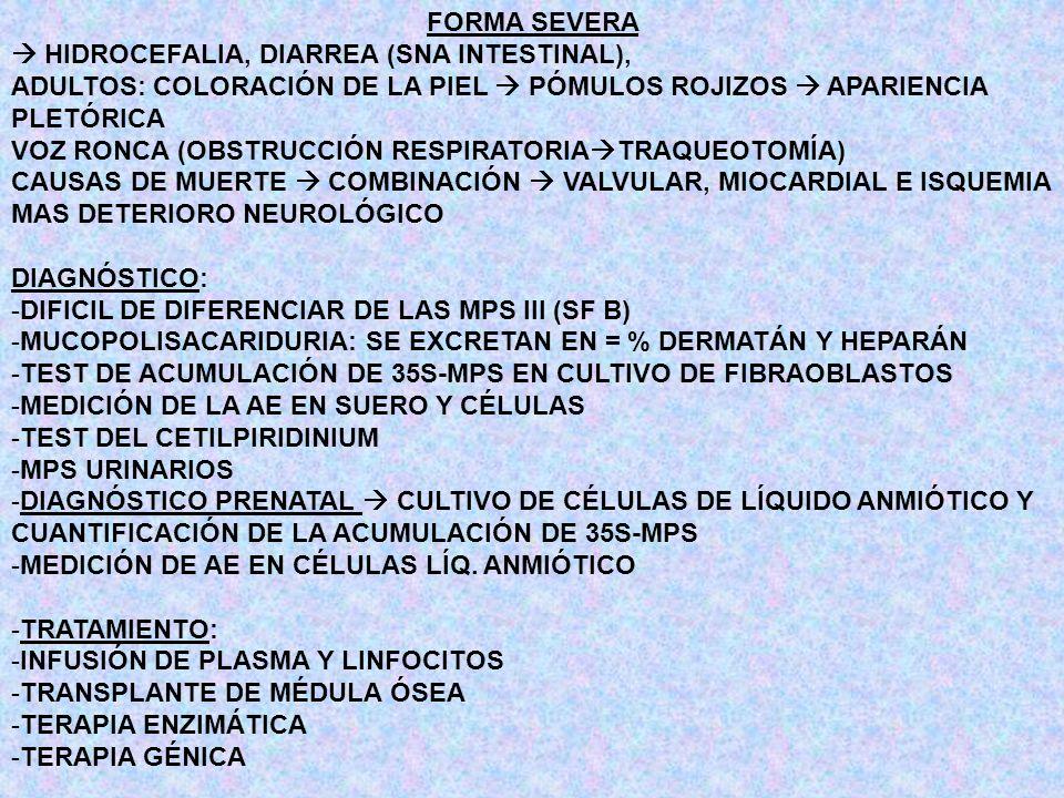 FORMA SEVERA  HIDROCEFALIA, DIARREA (SNA INTESTINAL), ADULTOS: COLORACIÓN DE LA PIEL  PÓMULOS ROJIZOS  APARIENCIA PLETÓRICA.