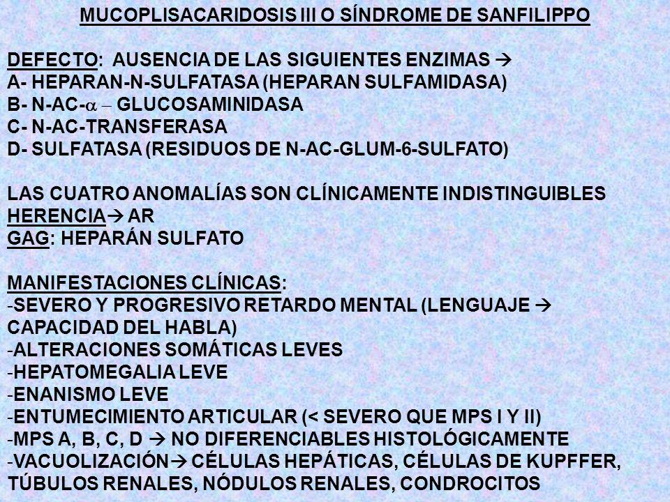 MUCOPLISACARIDOSIS III O SÍNDROME DE SANFILIPPO