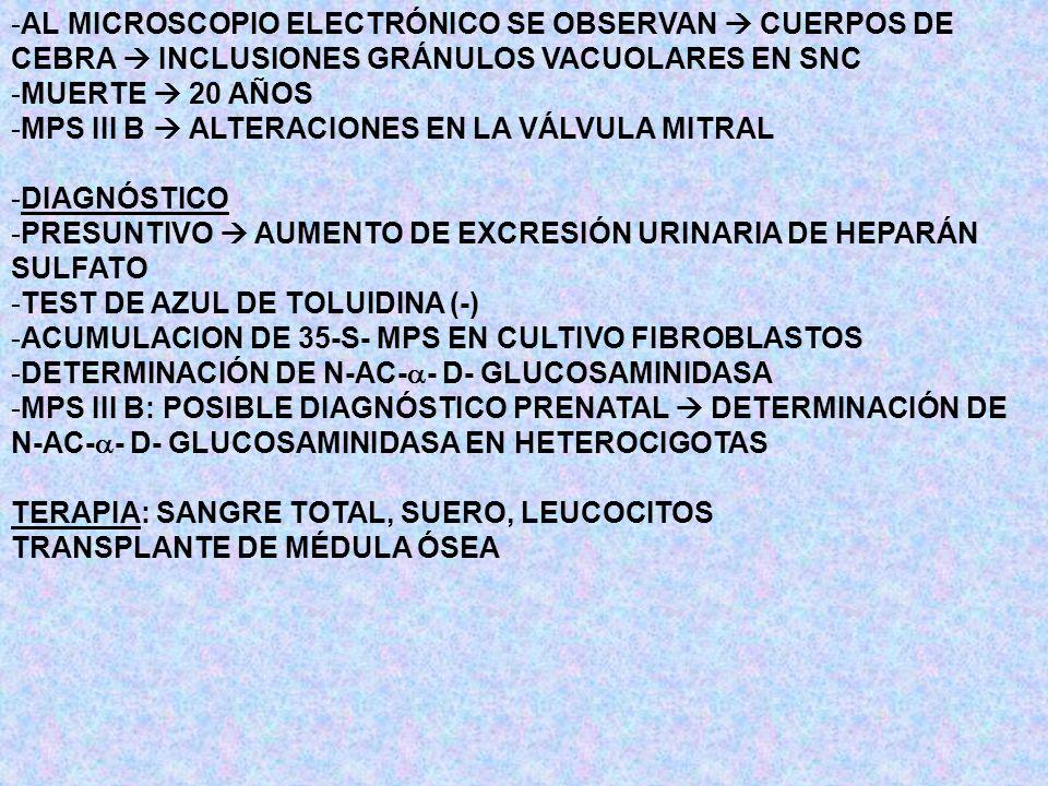 AL MICROSCOPIO ELECTRÓNICO SE OBSERVAN  CUERPOS DE CEBRA  INCLUSIONES GRÁNULOS VACUOLARES EN SNC