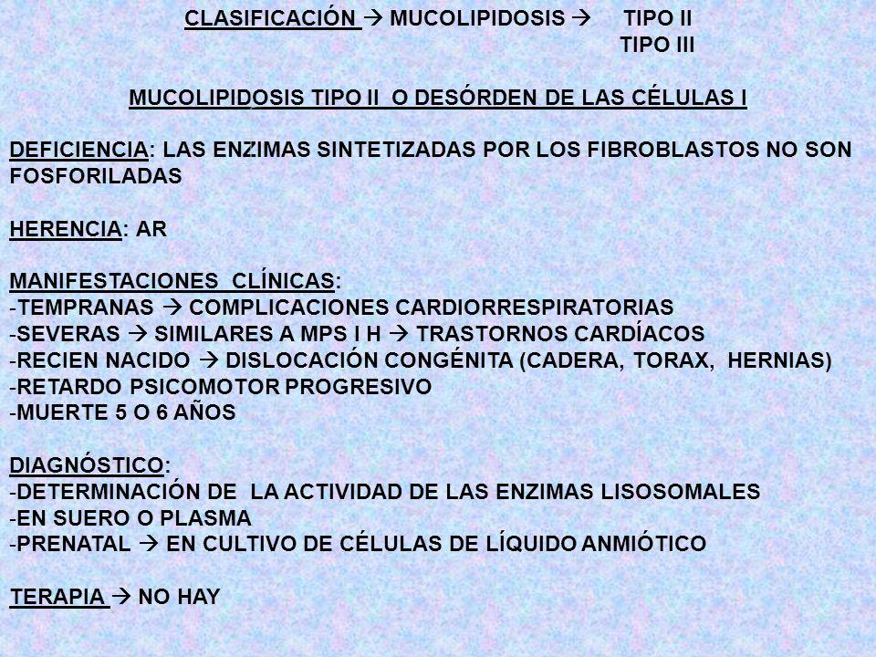 CLASIFICACIÓN  MUCOLIPIDOSIS  TIPO II TIPO III