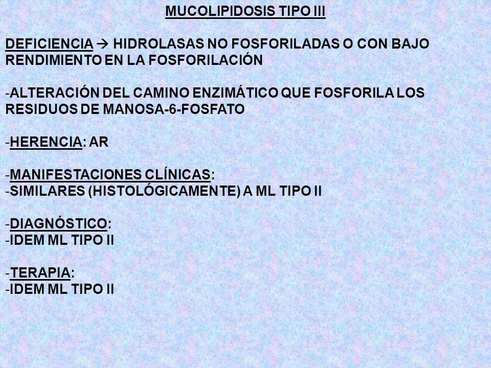 MUCOLIPIDOSIS TIPO III