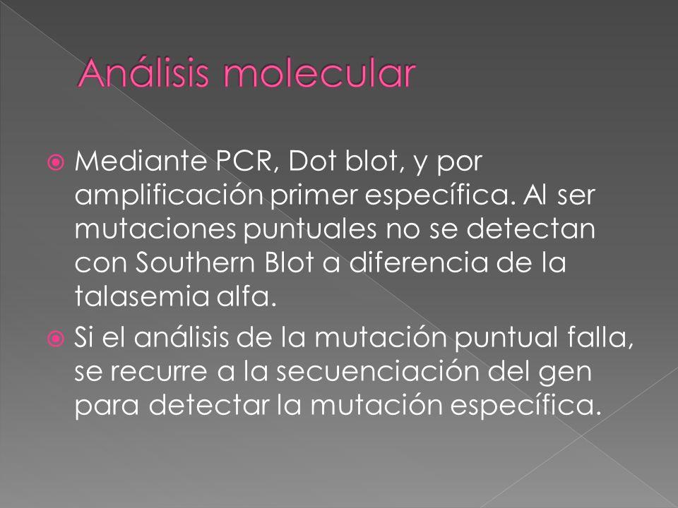 Análisis molecular