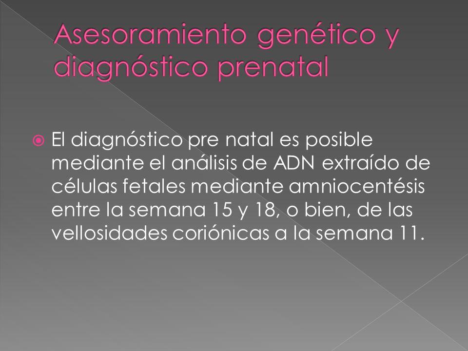 Asesoramiento genético y diagnóstico prenatal