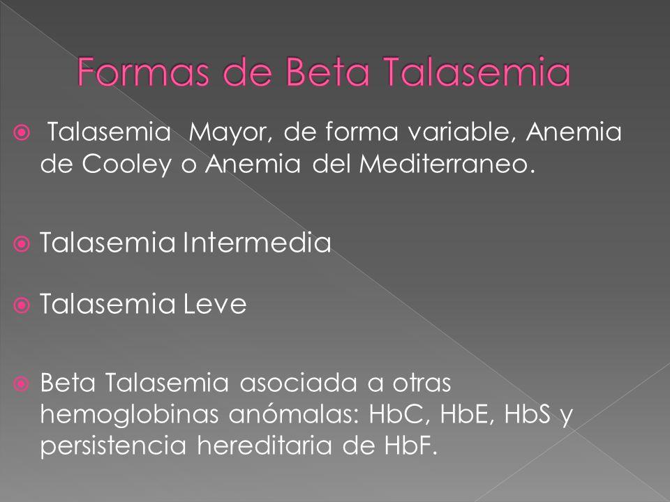 Formas de Beta Talasemia