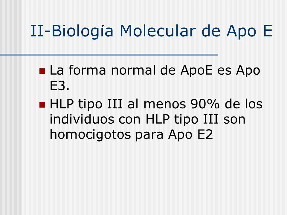 II-Biología Molecular de Apo E