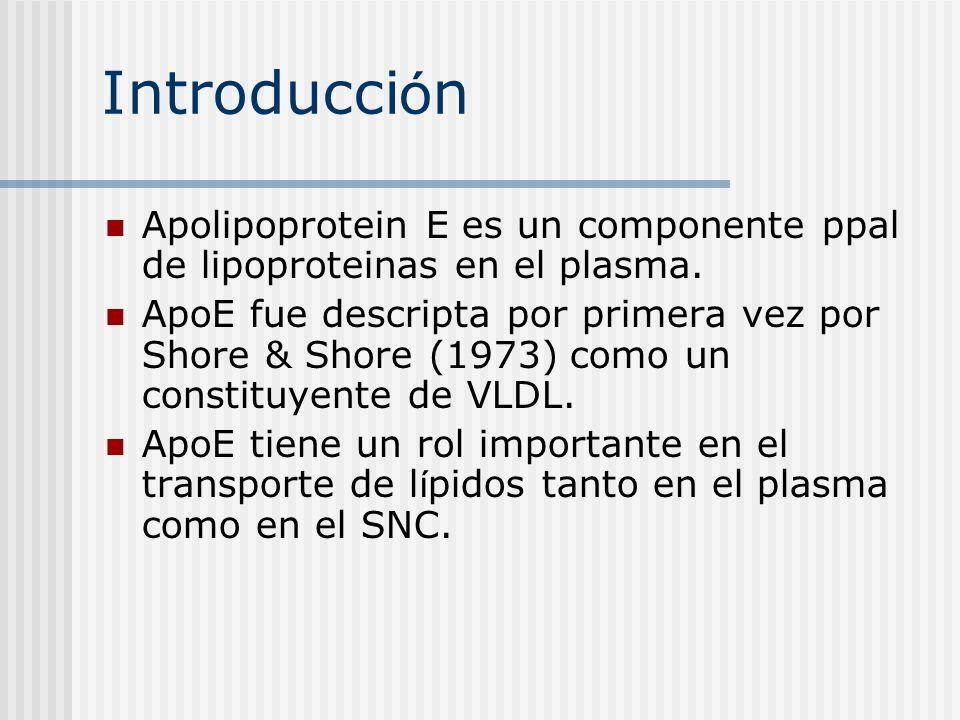 Introducción Apolipoprotein E es un componente ppal de lipoproteinas en el plasma.