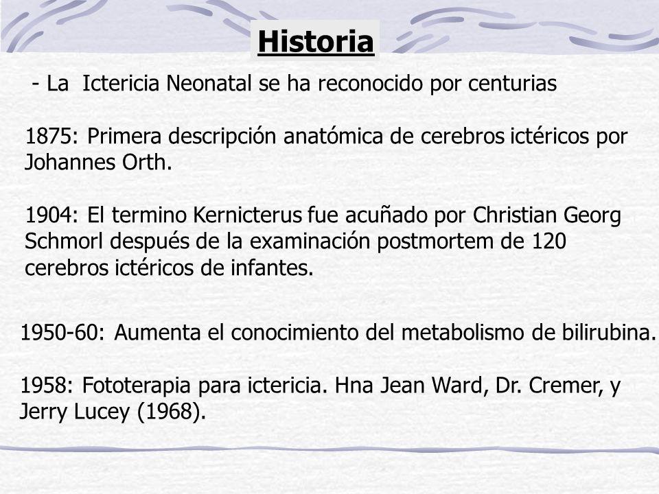 Historia - La Ictericia Neonatal se ha reconocido por centurias