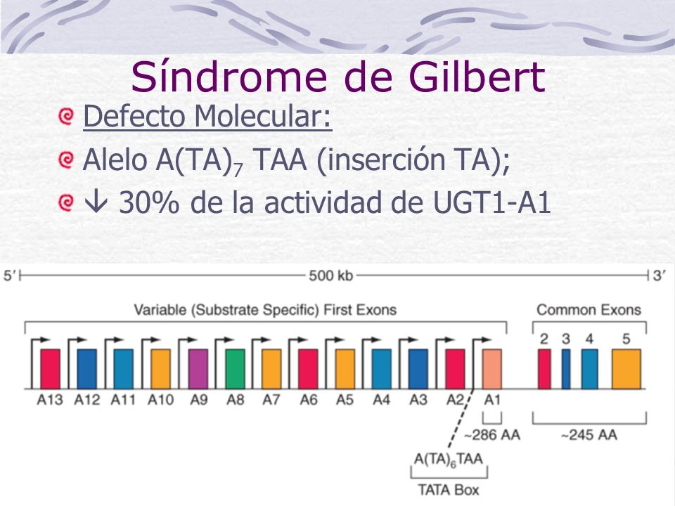 Síndrome de Gilbert Defecto Molecular: