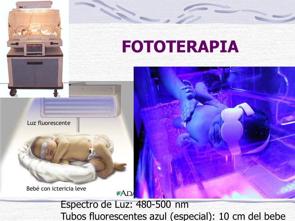 FOTOTERAPIA Espectro de Luz: 480-500 nm