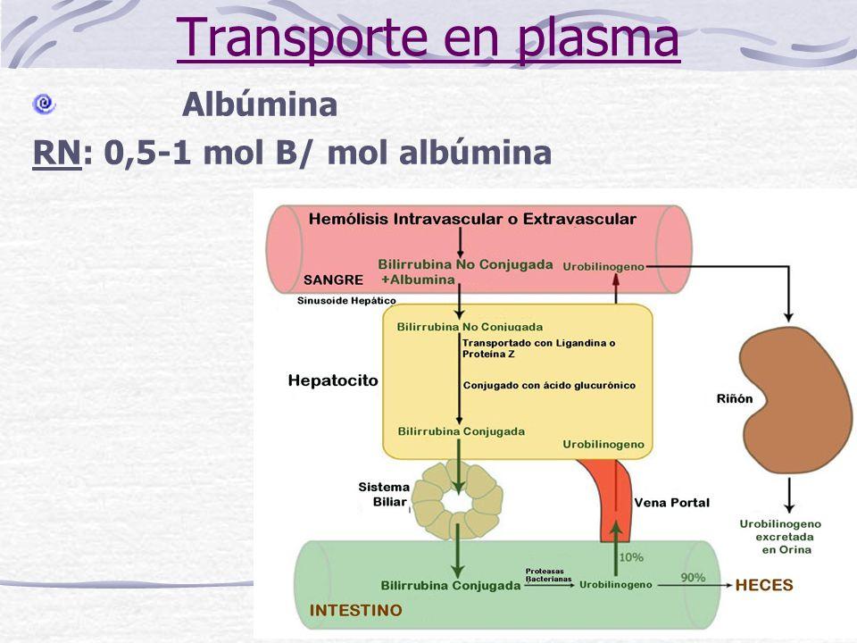 Transporte en plasma Albúmina RN: 0,5-1 mol B/ mol albúmina