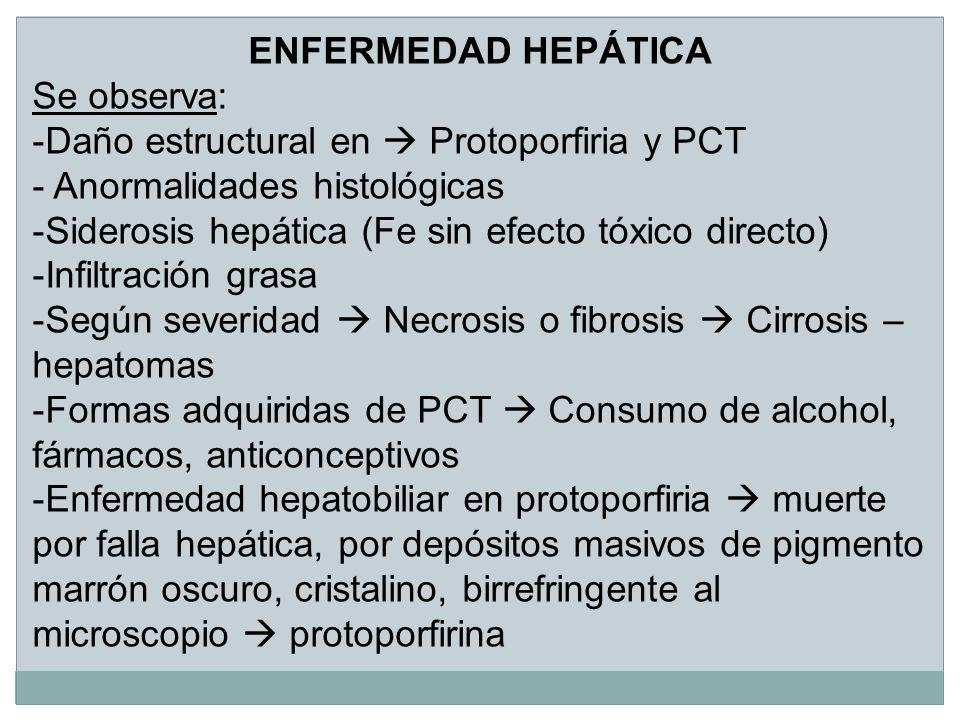 ENFERMEDAD HEPÁTICASe observa: Daño estructural en  Protoporfiria y PCT. Anormalidades histológicas.