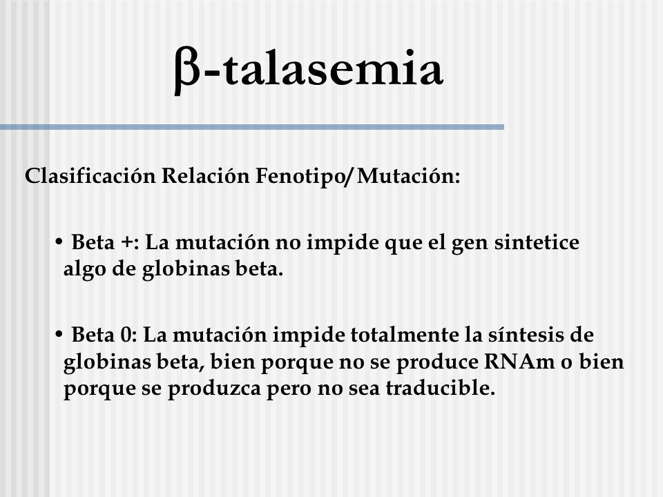 b-talasemia Clasificación Relación Fenotipo/ Mutación: