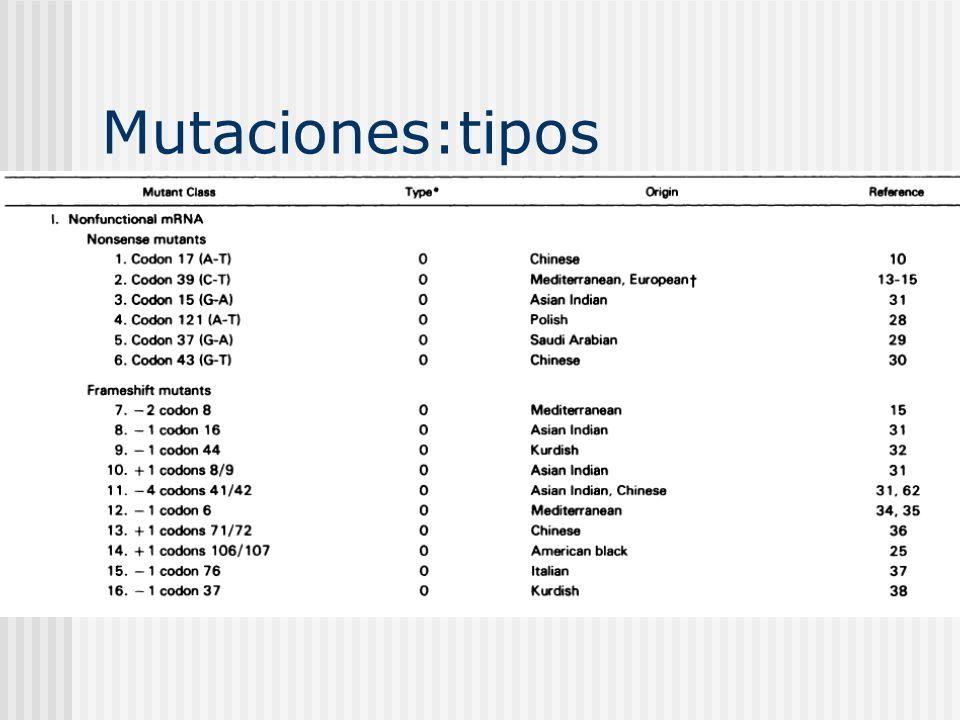 Mutaciones:tipos