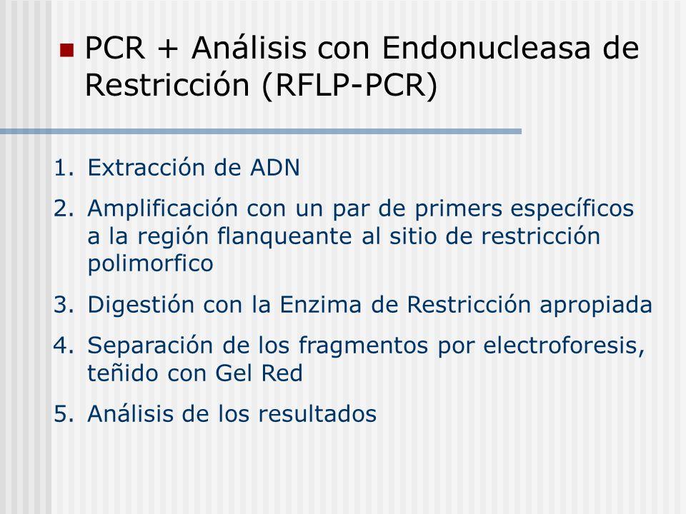 PCR + Análisis con Endonucleasa de Restricción (RFLP-PCR)