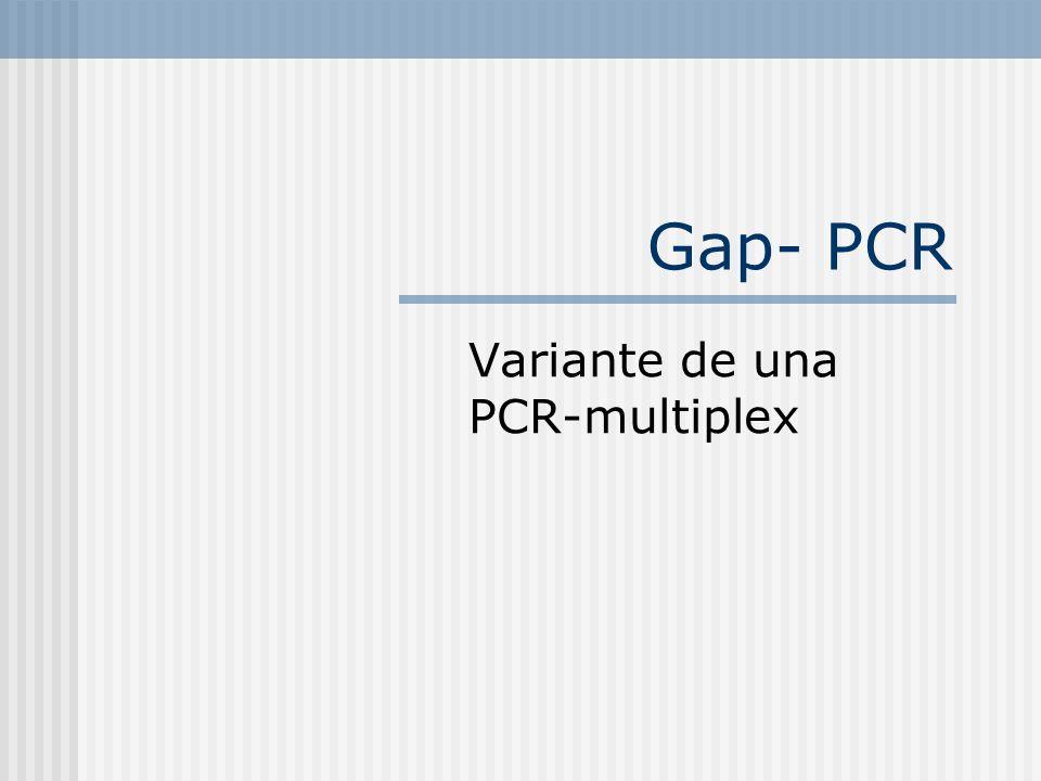 Variante de una PCR-multiplex