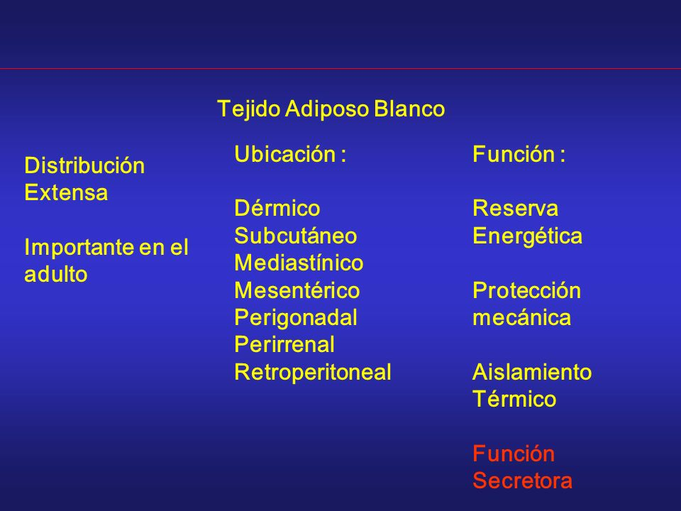 Tejido Adiposo Blanco Ubicación : Dérmico. Subcutáneo. Mediastínico. Mesentérico. Perigonadal.