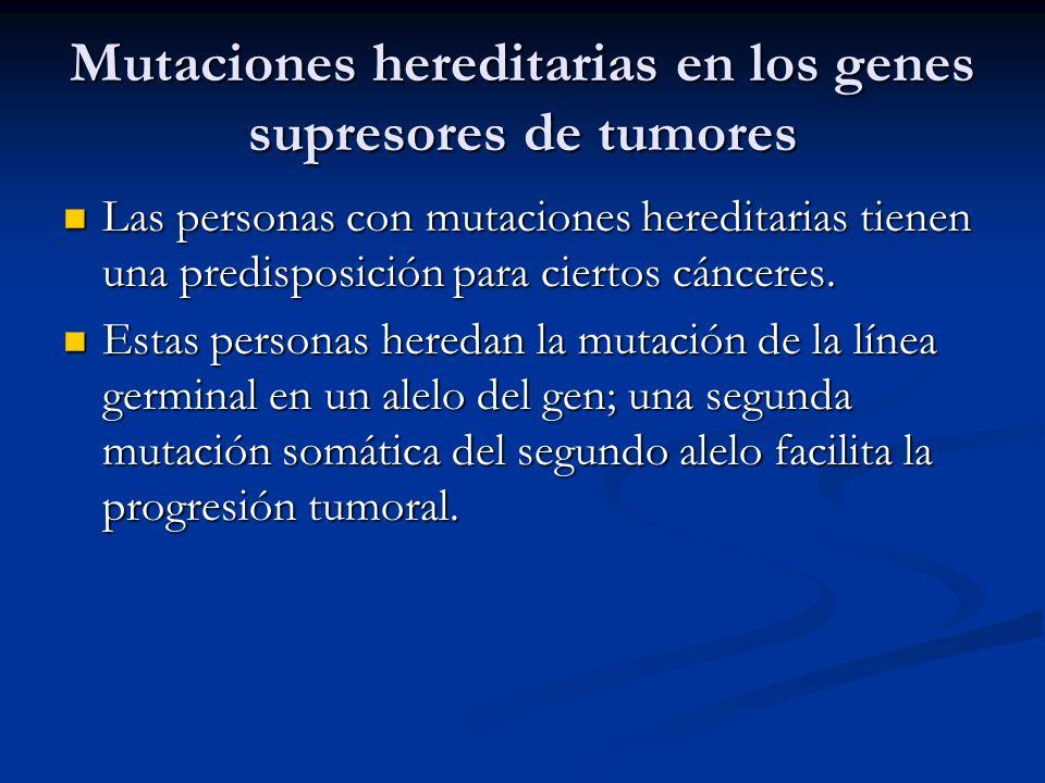 Mutaciones hereditarias en los genes supresores de tumores