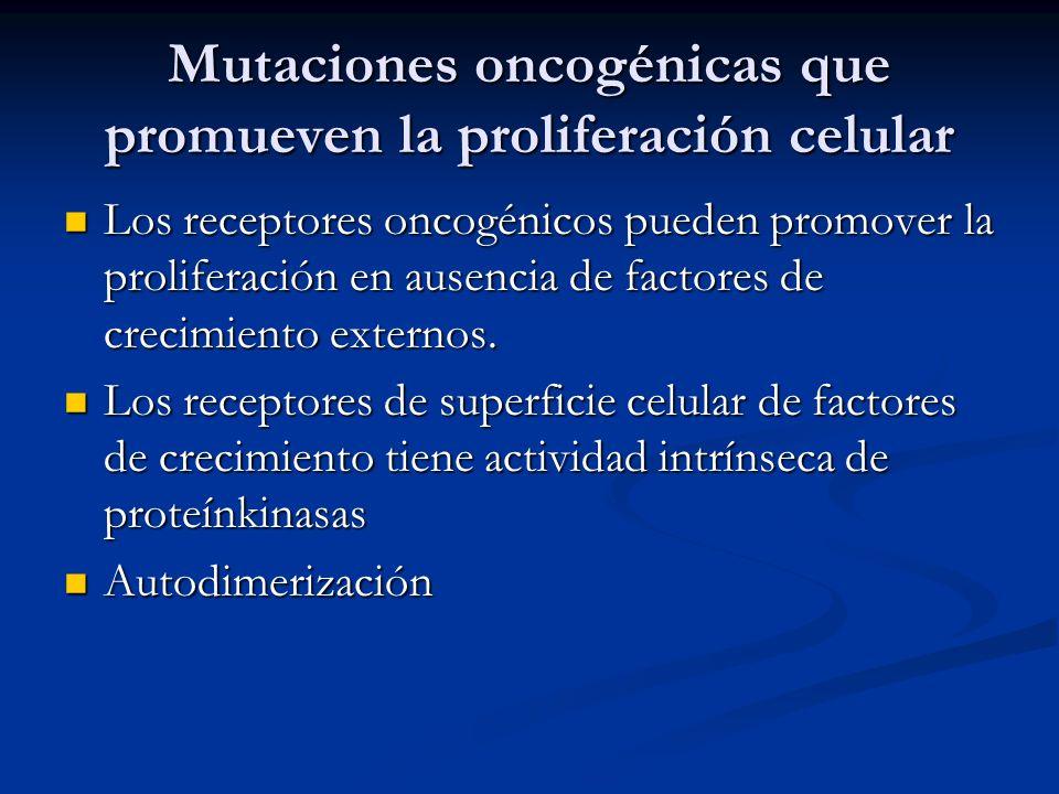 Mutaciones oncogénicas que promueven la proliferación celular