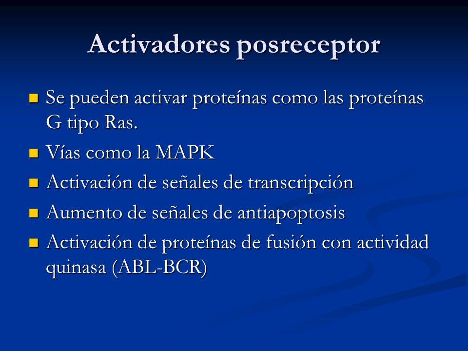 Activadores posreceptor