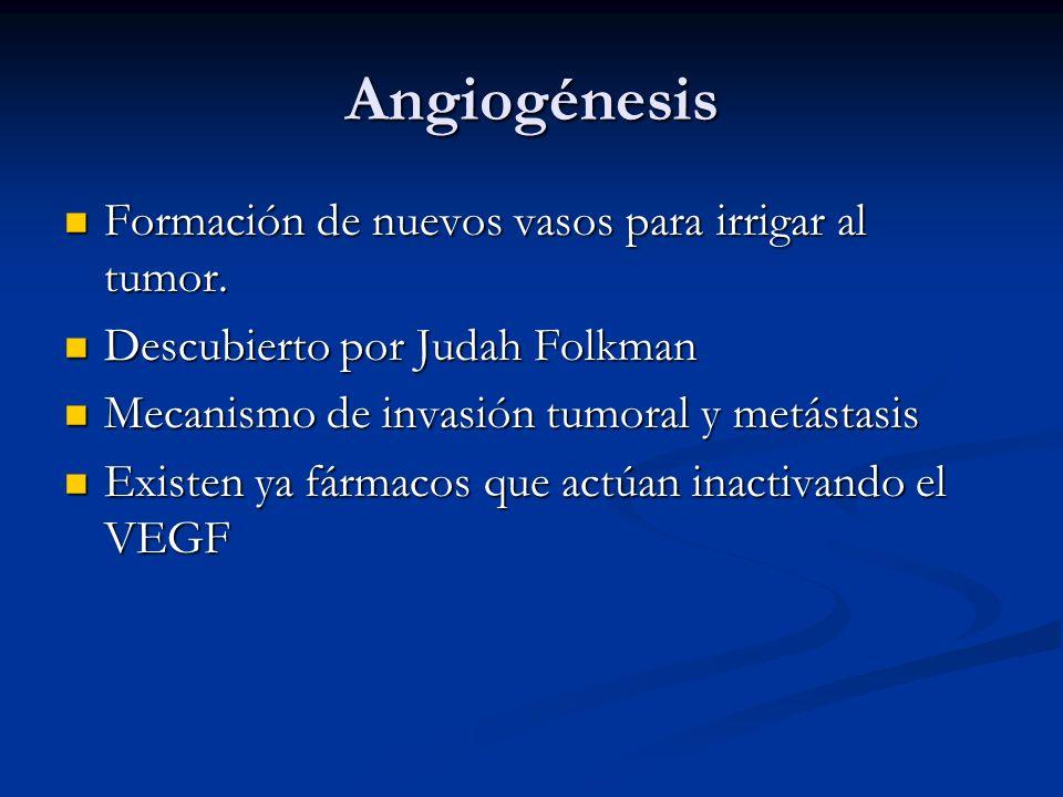 Angiogénesis Formación de nuevos vasos para irrigar al tumor.