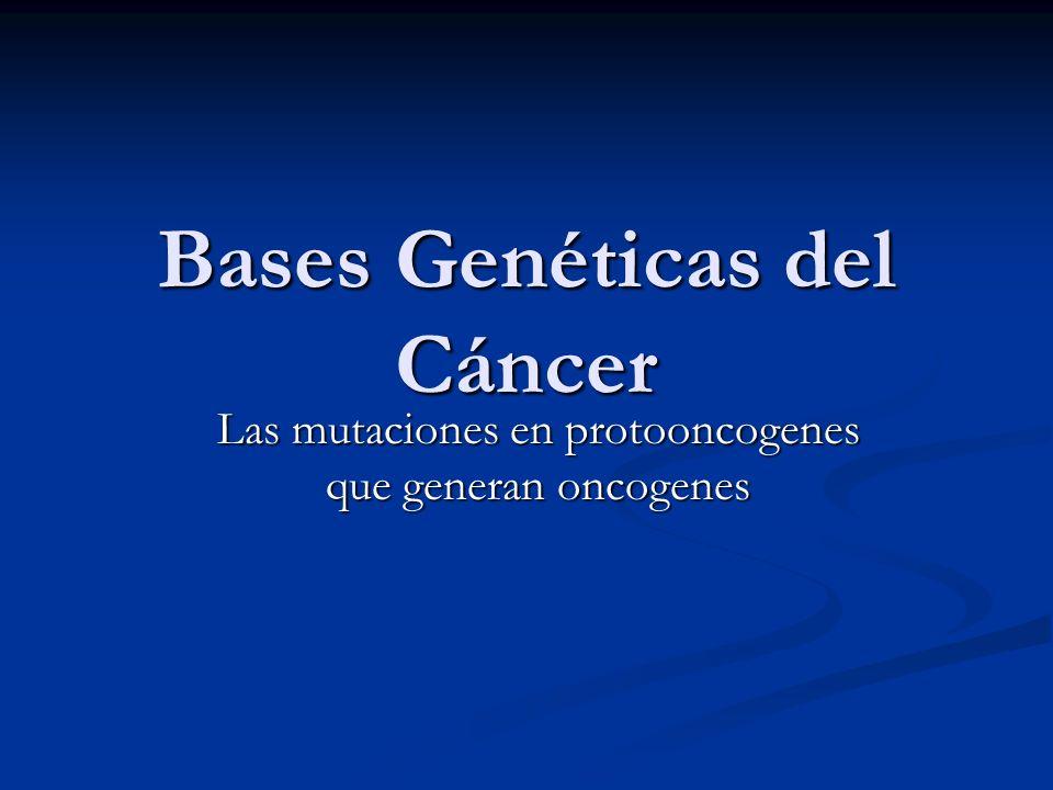 Bases Genéticas del Cáncer