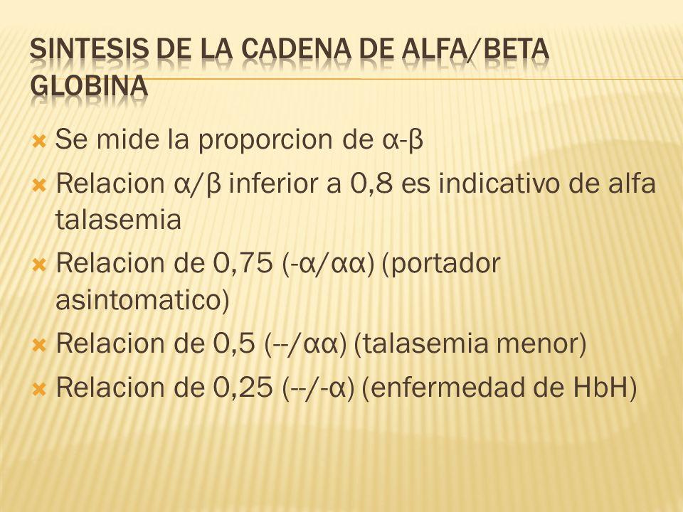 Sintesis de la cadena de alfa/beta globina