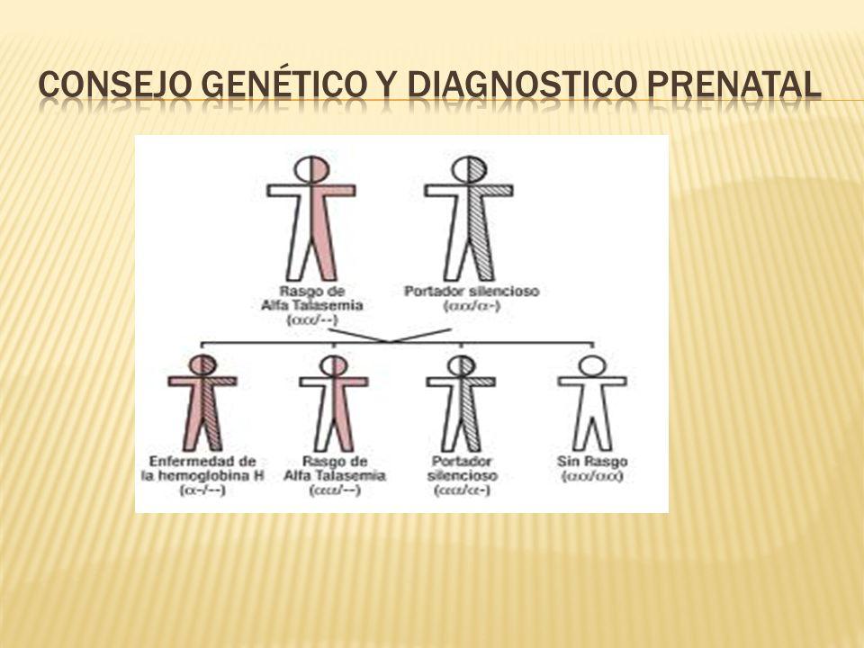 Consejo genético y diagnostico prenatal