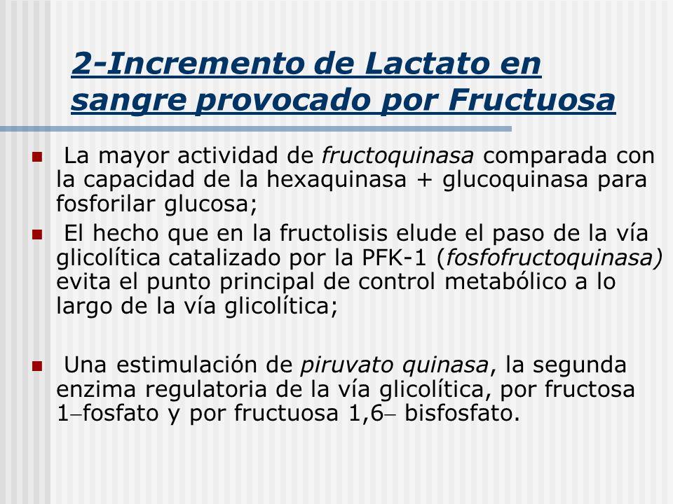 2-Incremento de Lactato en sangre provocado por Fructuosa
