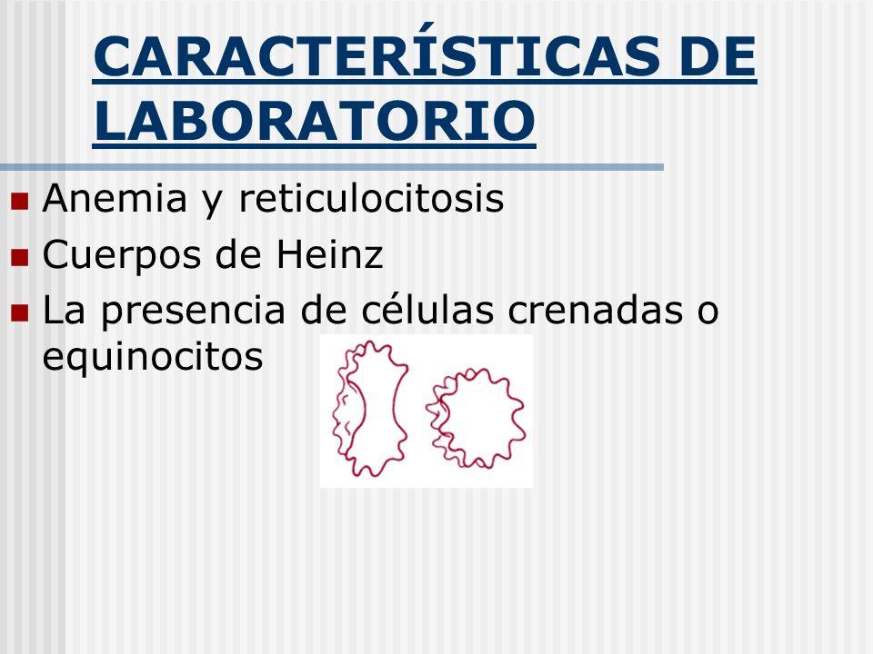 CARACTERÍSTICAS DE LABORATORIO