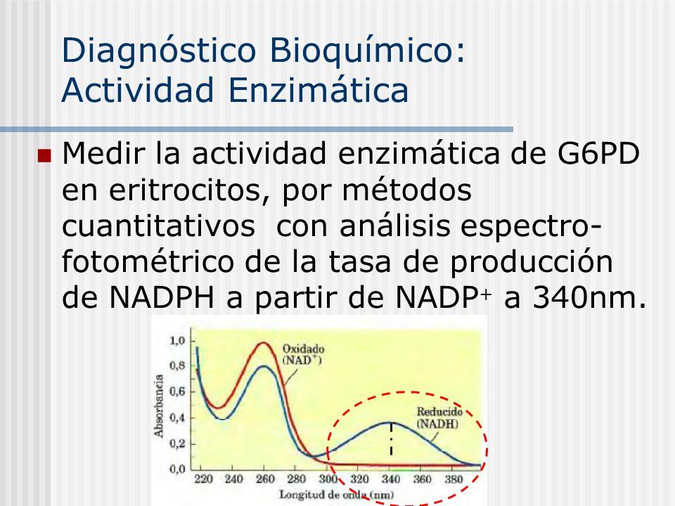 Diagnóstico Bioquímico: Actividad Enzimática