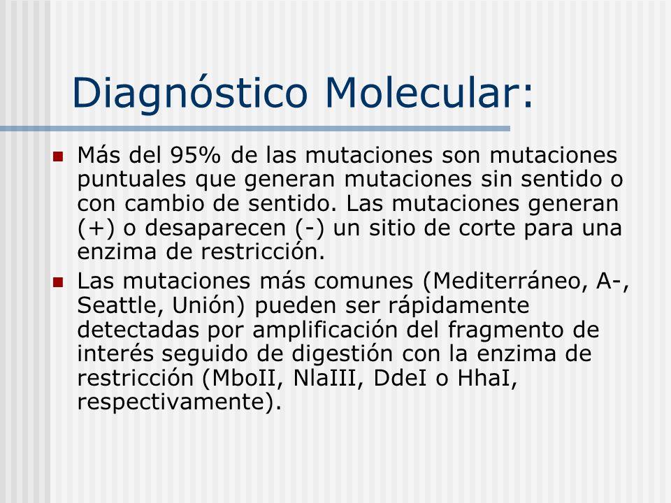 Diagnóstico Molecular: