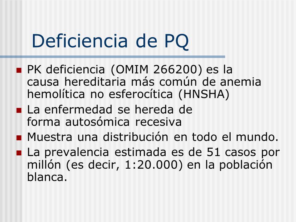 Deficiencia de PQPK deficiencia (OMIM 266200) es la causa hereditaria más común de anemia hemolítica no esferocítica (HNSHA)