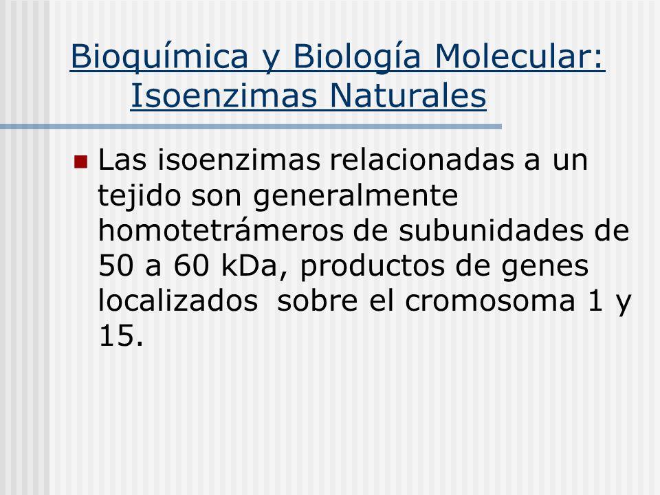Bioquímica y Biología Molecular: Isoenzimas Naturales