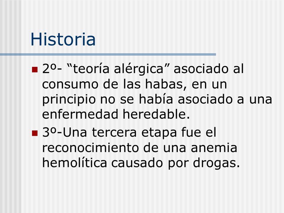 Historia 2º- teoría alérgica asociado al consumo de las habas, en un principio no se había asociado a una enfermedad heredable.