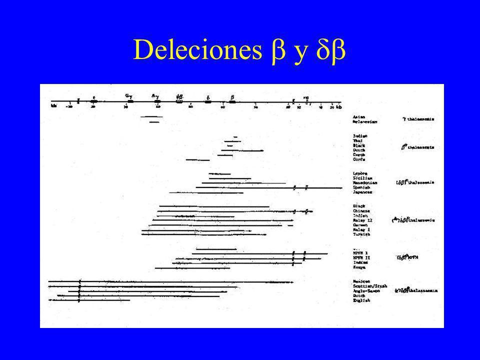 Deleciones  y 