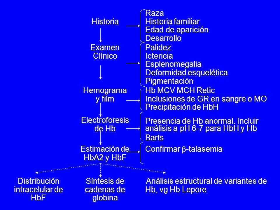 Análisis estructural de variantes de