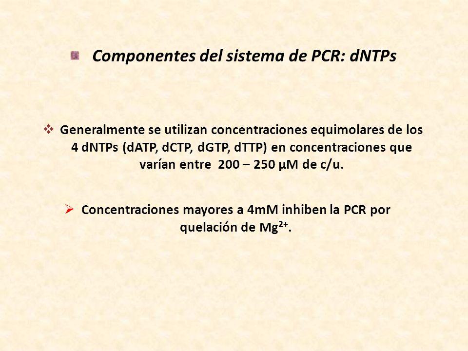 Componentes del sistema de PCR: dNTPs
