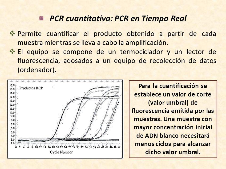 PCR cuantitativa: PCR en Tiempo Real